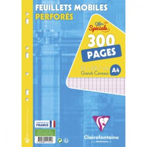 fm-300-pages-a4-seyes-90g-fm-300-pages-a4-seyes-90g-3329680117516_0